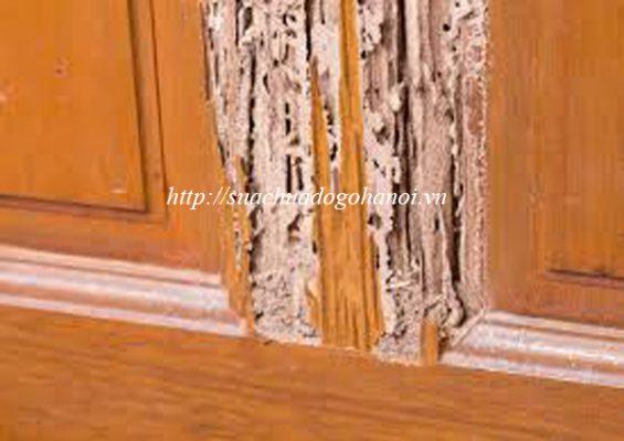 thợ mộc sửa chữa đồ gỗ bị mối mọt tại hà nội