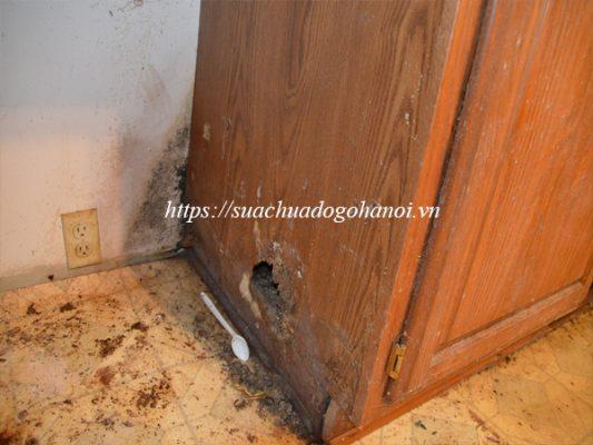 Nguyên nhân gây hư hại tủ gỗ