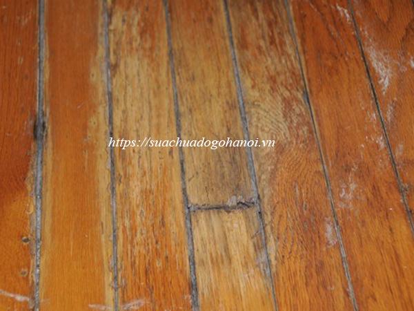 sàn gỗ mục nát